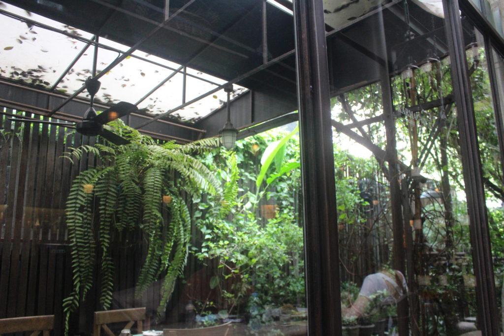 カルマカメット店内の緑