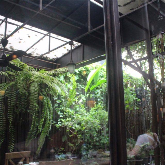 カルマカメットの店内の緑